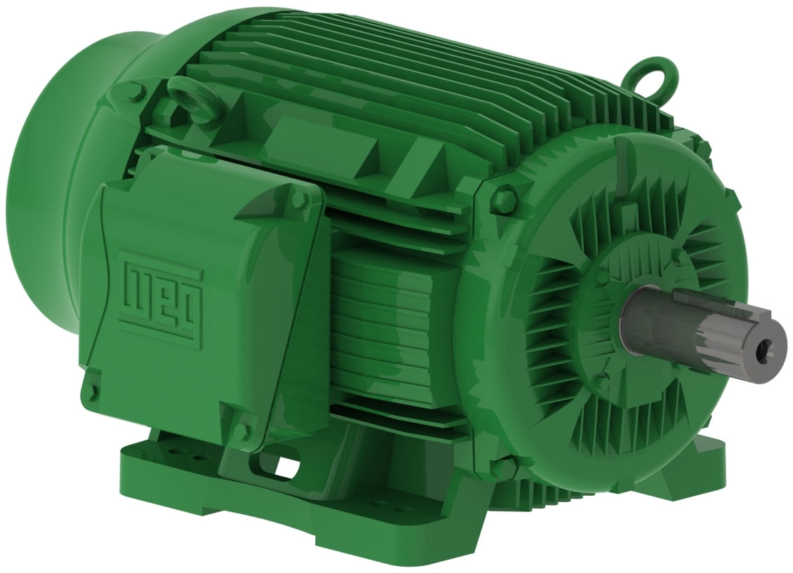 WEG W22 Super Premium Efficient Motors